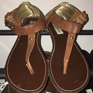 Steve Madden - Offers welcome!:)